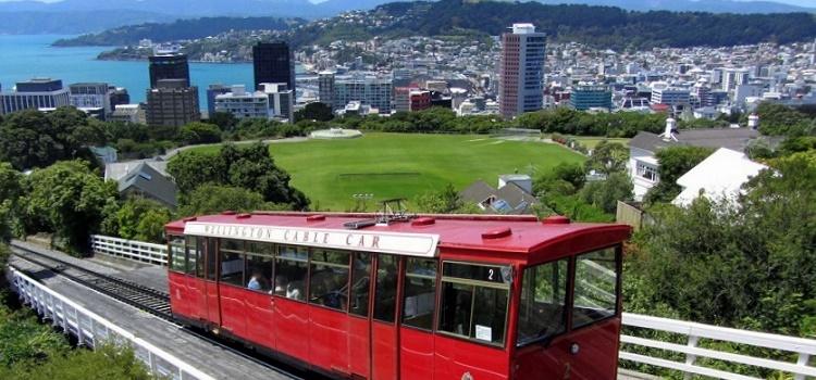 Wellington eco-friendly hotels, tours, restaurants