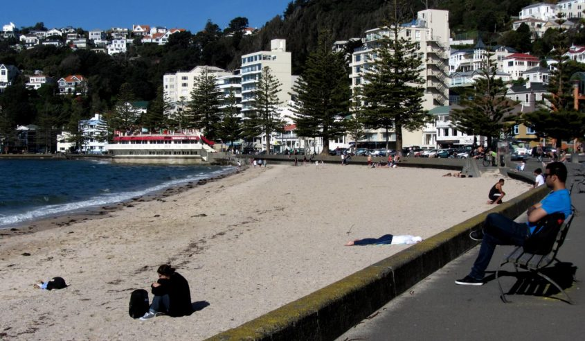 Green City Trips destination Wellington