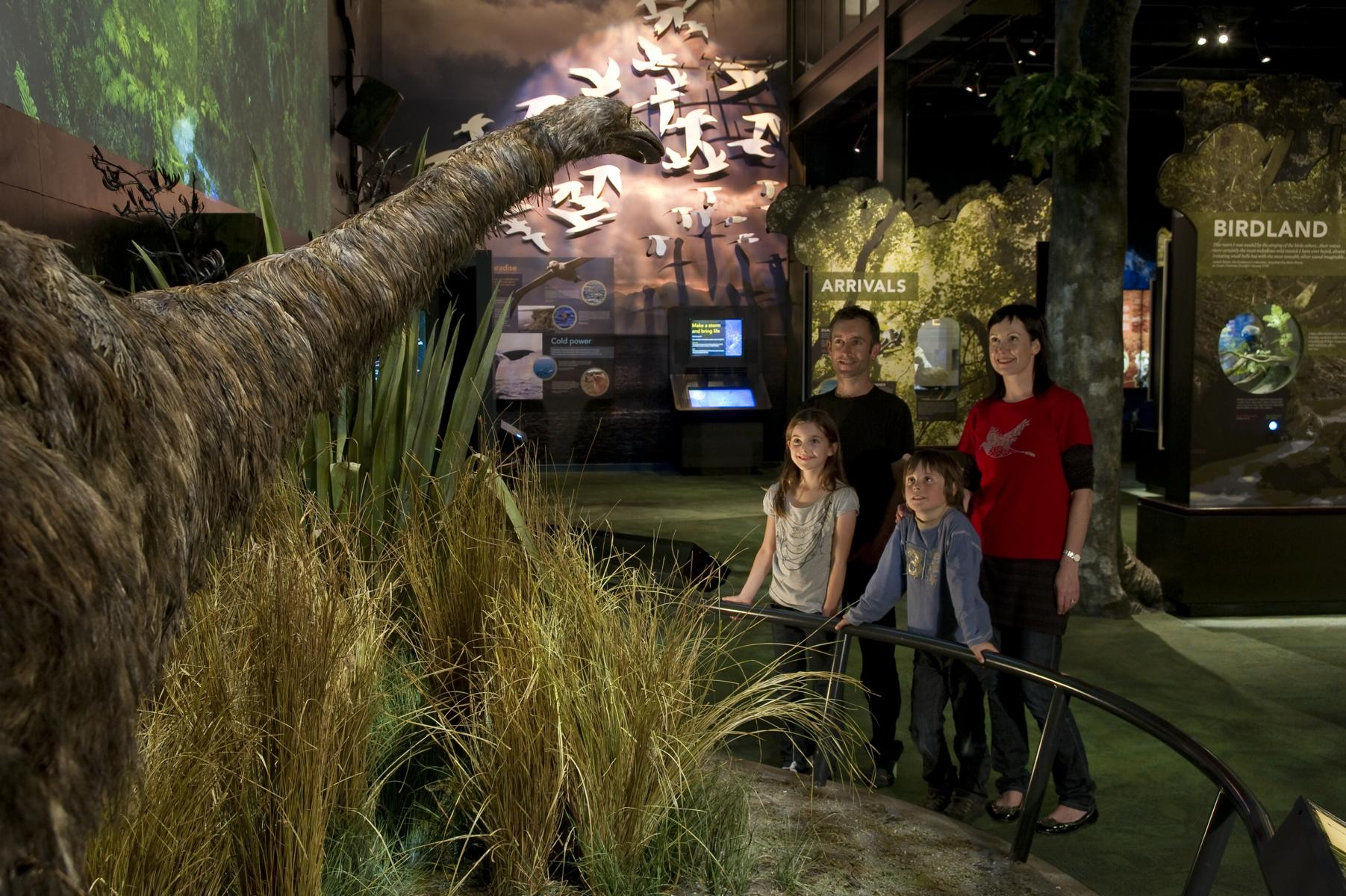 Zealandia promotion only - Zealandia Exhibition - Night Tour Through Zealandia