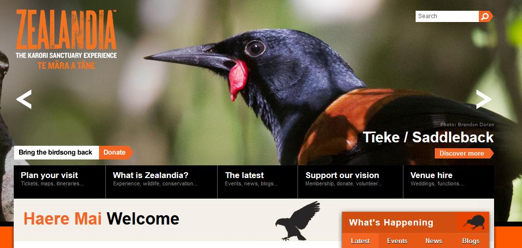 Zealandia website Night Tour Through Zealandia