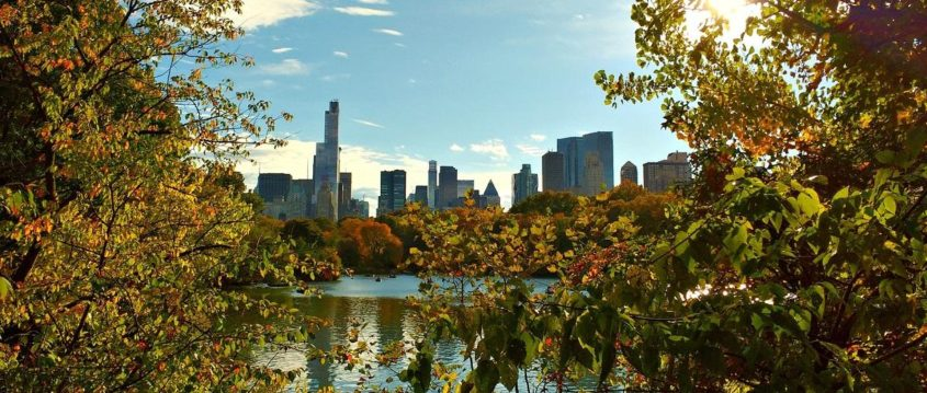 Green City Trips destination New York