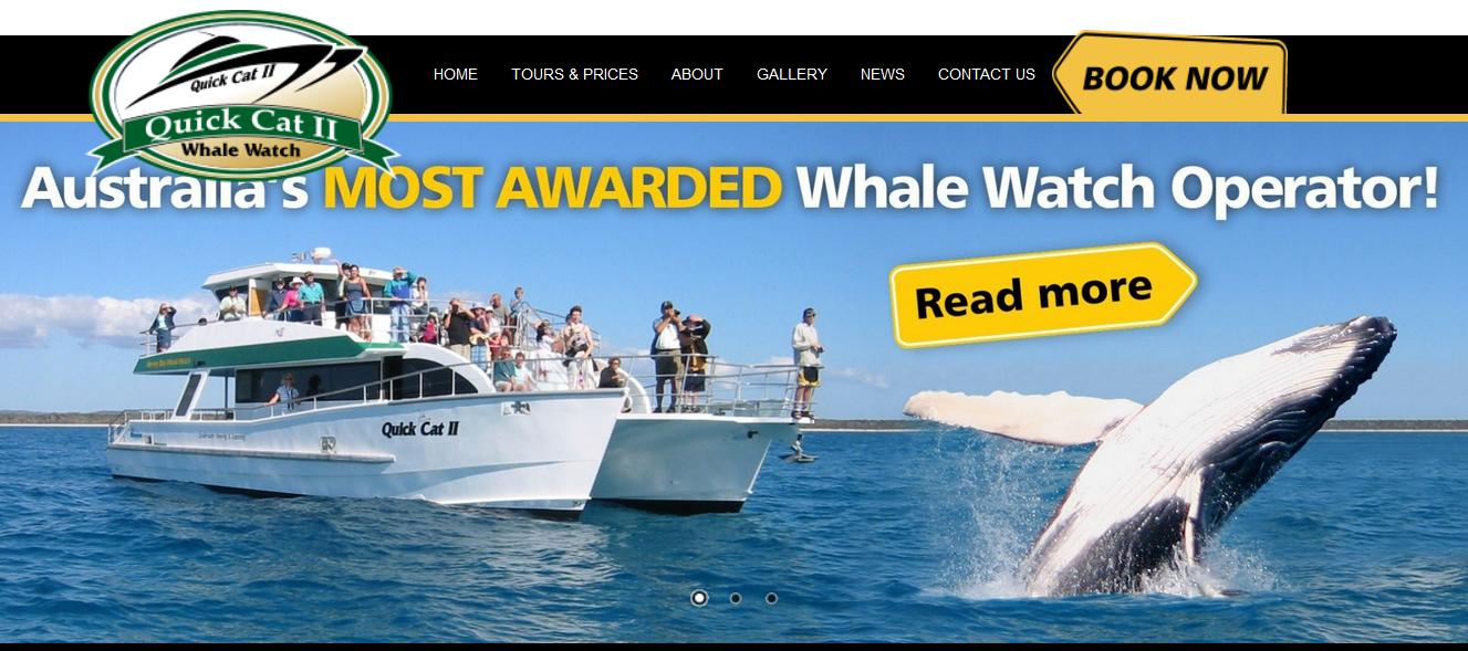 Hervey Bay Whale Watching with Quick Cat II, Queensland, Australia
