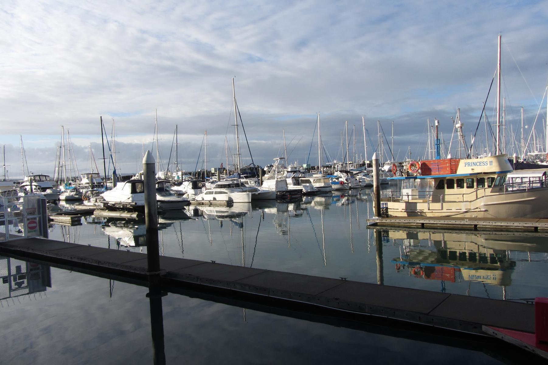 Morning at the harbour, checking in, Hervey Bay Whale Watching, Queensland, Australia