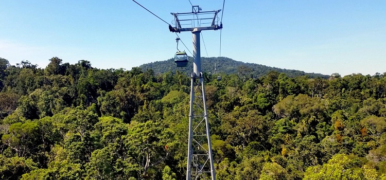 Review of Skyrail Rainforest Cableway and Kuranda Scenic Railway in Cairns