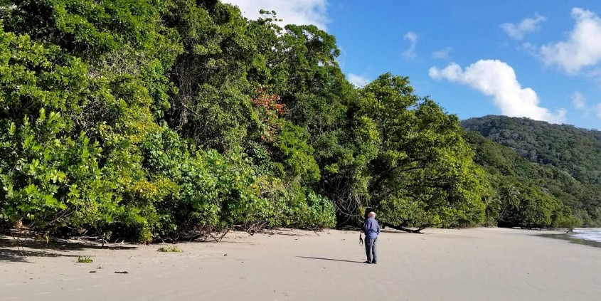 Cape Tribulation with Daintree Rainforest - day trip from Cairns