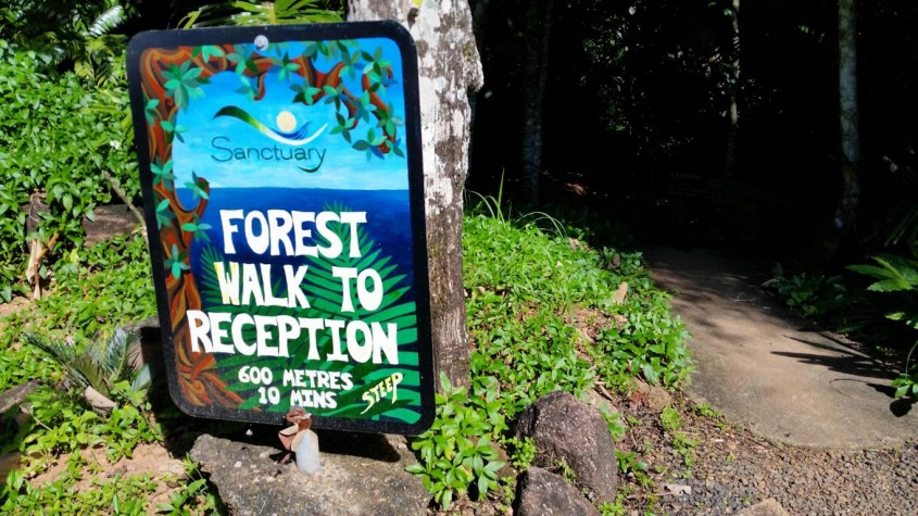 Forest walk to reception at Sanctuary Retreat in Mission Beach, near Cairns