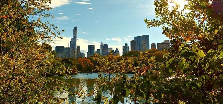 Destination New York City: Hotels, Activities and Urban Adventures for Eco-Smart City Travelers