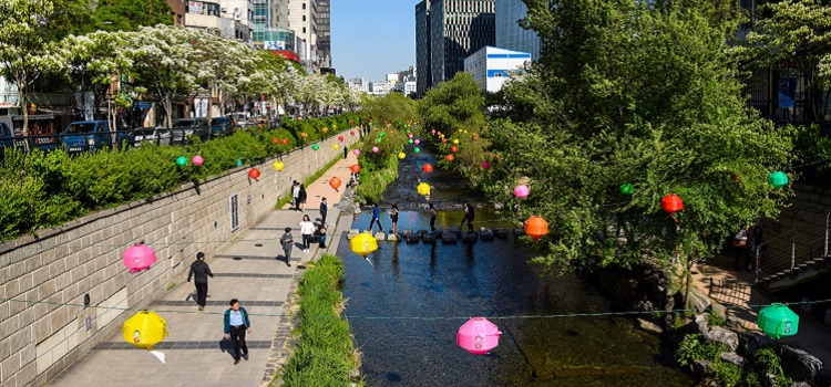 Seoul: Hotels, Eateries and Urban Adventures for Eco-Smart City Travelers