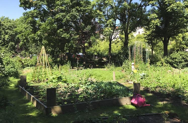 communal gardens in Berlin
